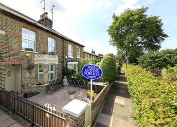 Thumbnail 2 bed terraced house to rent in Thetis Terrace, Kew