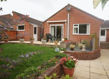 Thumbnail 3 bed bungalow to rent in Salisbury Close, Alton