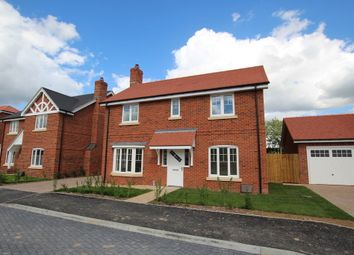 Thumbnail 4 bed detached house to rent in The Pippins, Swallowfield, Reading