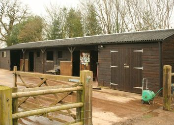 Thumbnail Equestrian property to rent in Slindon, Near Eccleshall, Staffordshire