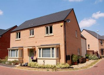 Thumbnail 4 bedroom detached house for sale in Scott Close, Marina Park, Northampton