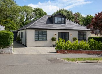 Thumbnail 5 bed detached house for sale in Bushey Wood Road, Dore, Sheffield