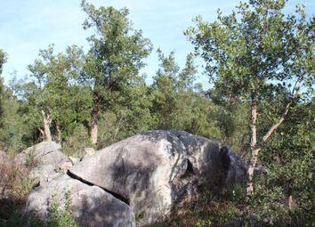 Thumbnail Land for sale in Alferce, Alferce, Monchique