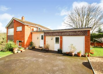 Thumbnail 4 bed detached house for sale in Mount Raleigh, Bideford