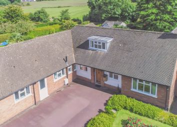 Thumbnail 4 bedroom detached bungalow for sale in Ringers Spinney, Oadby, Leicester