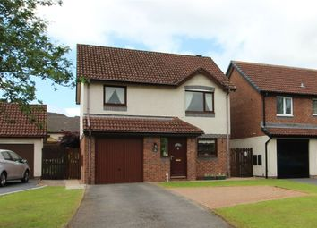 Thumbnail 3 bed detached house for sale in Meadow Croft, Penrith, Cumbria