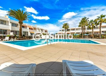 Thumbnail Studio for sale in Costa Del Silencio, El Chaparral, 38632, Costa Del Silencio, Tenerife, Canary Islands, Spain
