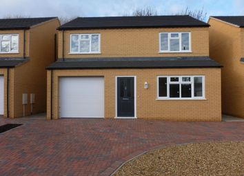 Thumbnail 4 bed detached house for sale in Dock Road, Chatteris