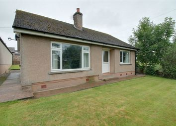 Thumbnail 2 bed detached bungalow to rent in Wreay Bungalow, Pallet Hill, Penrith, Cumbria
