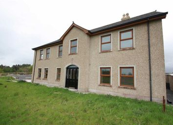 Thumbnail 3 bed semi-detached house to rent in Broomhill Road, Ballynahinch
