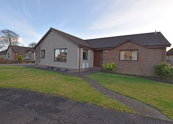 4 bed bungalow for sale in Altamount Road, Blairgowrie PH10
