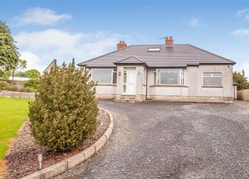 Thumbnail 3 bedroom detached bungalow for sale in Front Road, Lisburn, County Antrim