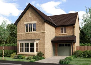 "Thumbnail 3 bedroom detached house for sale in ""The Malory"" at West Lane Cottages, Longframlington, Morpeth"