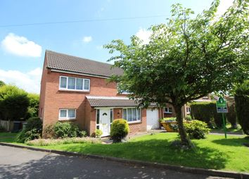 Thumbnail 4 bed detached house to rent in Copsewood, South Normanton, Alfreton