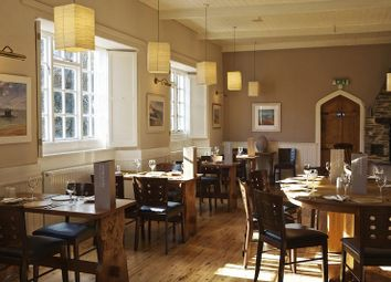 Thumbnail Restaurant/cafe for sale in Strete, Dartmouth