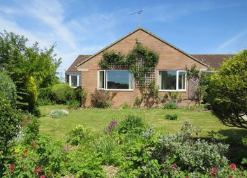 Thumbnail Detached bungalow for sale in Oakwood Drive, Iwerne Minster, Blandford Forum