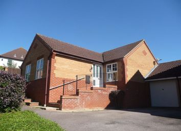 Thumbnail 3 bed bungalow to rent in Campanula Close, Abington, Northampton