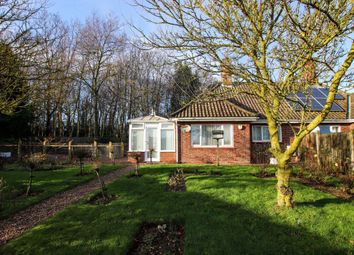Thumbnail 2 bed semi-detached bungalow for sale in Grove Bungalows, Upper Street, Horning, Norwich