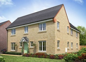 Thumbnail 4 bed detached house for sale in Dragonfly Meadow, Pineham, Northamptonshire