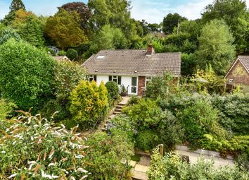 Thumbnail 4 bed detached bungalow for sale in Woodlands Lane, Haslemere