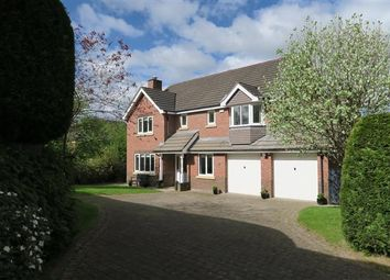 Thumbnail 4 bed detached house for sale in Betchworth Way, Macclesfield