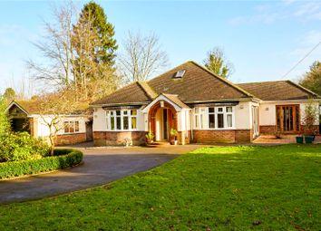 Thumbnail 4 bed detached bungalow for sale in Doctors Lane, Chaldon, Surrey