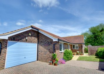 Thumbnail 4 bed detached bungalow to rent in Sea Road, Winchelsea