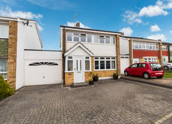 Thumbnail 3 bed link-detached house for sale in Laburnum Grove, Hockley