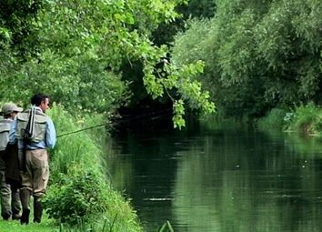 Thumbnail Commercial property for sale in The Timsbury Fishery - Rods, Manor Lane, Timsbury, Hampshire