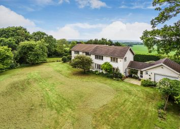 Thumbnail 5 bed property for sale in East Flexford Lane, Wanborough, Guildford