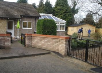 Thumbnail 2 bed detached bungalow to rent in Poplar Close, Great Shelford, Cambridge