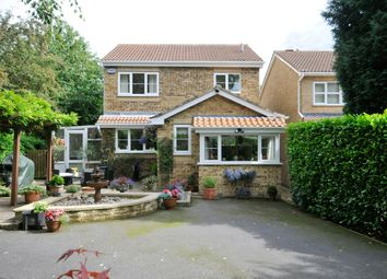 Thumbnail 4 bed detached house for sale in Sherbourne Avenue, Newbold, Chesterfield