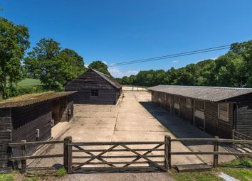 Thumbnail Land for sale in Land Available, Capel, Dorking