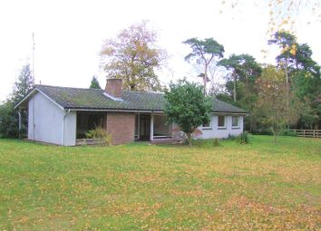 Thumbnail 3 bedroom detached bungalow to rent in Mill Lane, Fryerning, Ingatestone
