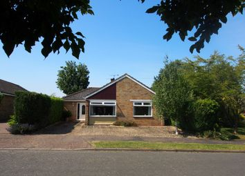 Thumbnail 4 bed detached bungalow to rent in Hillside, Barnham Broom, Norwich