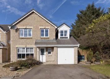 Thumbnail 4 bed detached house to rent in Highfield Way, Stonehaven, Aberdeenshire