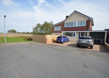 Sherborne, Great Lumley, Chester Le Street DH3. 4 bed detached house