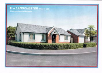 Thumbnail 3 bed detached bungalow for sale in Vine Tree Close, Withington, Hereford