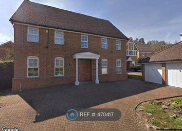 Thumbnail 5 bed detached house to rent in Rees Drive, London