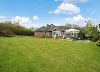 Thumbnail 3 bed detached bungalow for sale in Brook Street, Buxton, Norwich