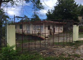 Thumbnail Office for sale in Boscobel, Saint Mary, Jamaica