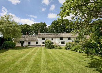 Thumbnail 4 bed cottage for sale in Stouts Lane, Bransgore, Christchurch