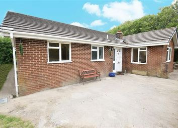 Thumbnail 3 bed bungalow for sale in Penrhos, Adfa, Newtown, Powys