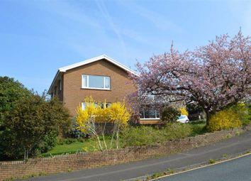 Thumbnail 4 bedroom detached house for sale in The Bryn, Derwen Fawr, Swansea