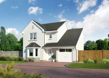 "Thumbnail 4 bedroom detached house for sale in ""Aberfoyle"" at Newlands Drive, Portlethen, Aberdeen"