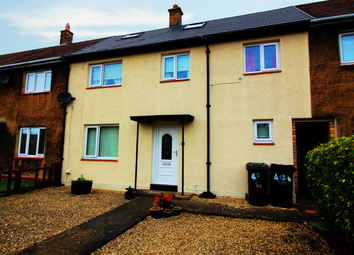 Thumbnail 4 bed terraced house for sale in Strother Close, Hexham, Northumberland