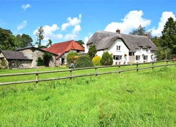 Thumbnail Leisure/hospitality for sale in Upottery, Honiton, Devon