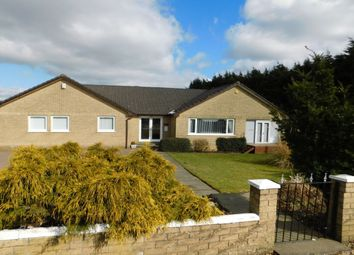 Thumbnail 4 bed bungalow for sale in Greenhill Road, Cleland, Motherwell