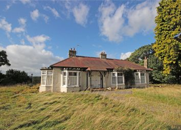 Thumbnail 2 bed detached bungalow for sale in The Grange, Great Musgrave, Kirkby Stephen, Cumbria