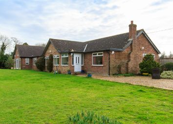 Thumbnail 4 bed detached bungalow for sale in Aslacton Road, Forncett St. Peter, Norwich